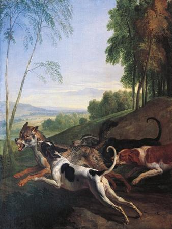 https://imgc.allpostersimages.com/img/posters/wolf-hunting-painting-by-alexandre-francois-desportes-1661-1743-france-17th-century_u-L-PUG67P0.jpg?p=0