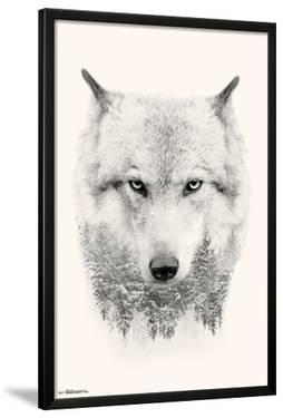 WOLF - TREES