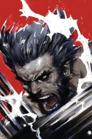 Wolverine: Soultaker No.1 Cover: Wolverine