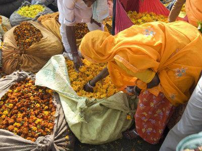 https://imgc.allpostersimages.com/img/posters/woman-buying-marigolds-flower-market-bari-chaupar-jaipur-rajasthan-india-asia_u-L-P91HDB0.jpg?p=0