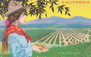 Woman Holding Almonds, California