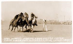 Woman's Four Horse Catch