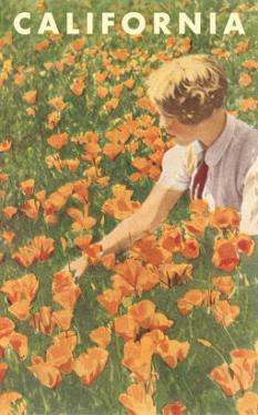 Woman Sitting in Poppies, California