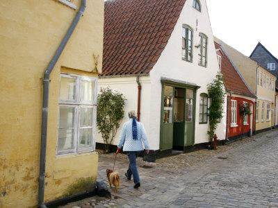 https://imgc.allpostersimages.com/img/posters/woman-walking-with-a-dog-in-ribe-historic-center-ribe-jutland-denmark-scandinavia-europe_u-L-P91HVZ0.jpg?p=0