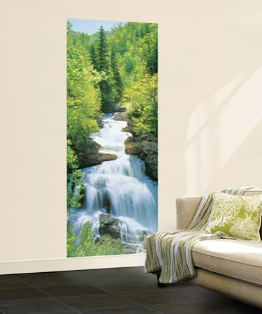 Wonderfall Waterfall Mural