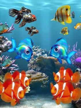Aquarium Fish Style by Wonderful Dream