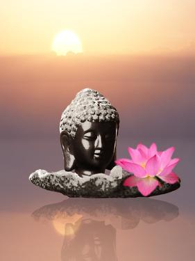 Buddha With Lotus Flower by Wonderful Dream
