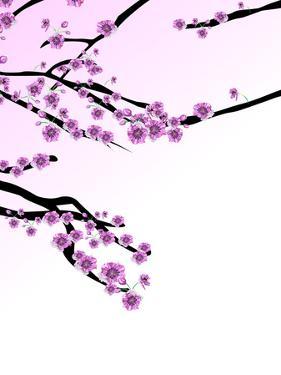 Cherry Blossom Sakura by Wonderful Dream