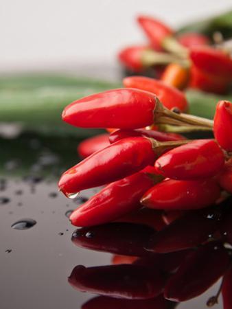 Chilli Food Kitchen by Wonderful Dream
