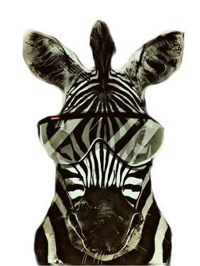 Hipster Zebra Africa by Wonderful Dream