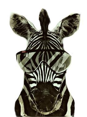Hipster Zebra Africa by Wonderful Dream