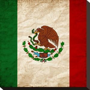 Mexico Flag by Wonderful Dream