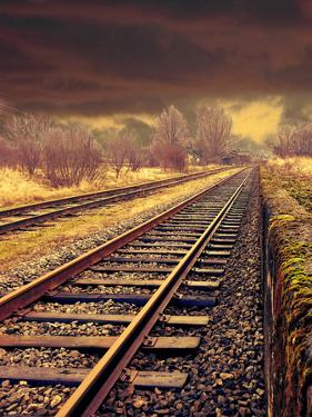 Railway Travel Nature by Wonderful Dream