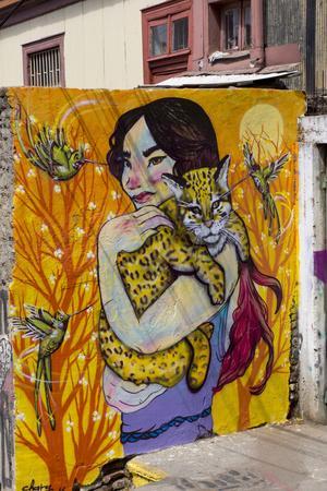 https://imgc.allpostersimages.com/img/posters/wonderful-graffiti-valparaiso-chile_u-L-PWFGR30.jpg?p=0