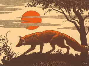 Woodcut of Fox