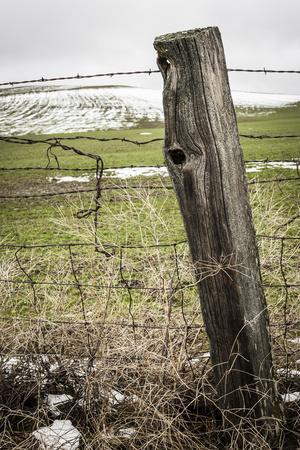https://imgc.allpostersimages.com/img/posters/wooden-fence-post-around-a-wheat-field-palouse-washington-usa_u-L-PN72FE0.jpg?p=0