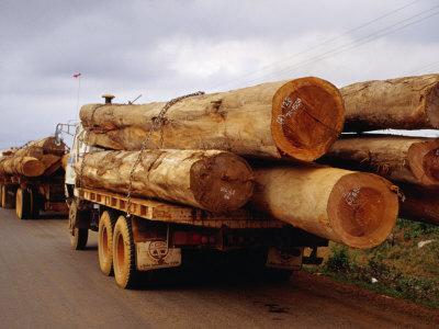 Logging Trucks on Road, Bolaven Plateau, Laos