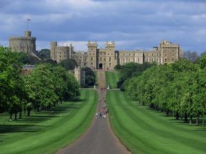 Long Walk from Windsor Castle, Berkshire, England, United Kingdom, Europe by Woolfitt Adam