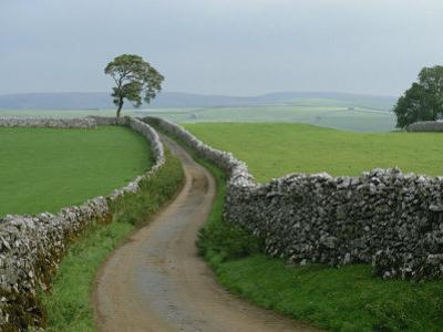 Rural Landscape and Road, Yorkshire, England, United Kingdom, Europe
