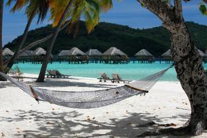 Hammock on Bora Bora Beach by Woolfy
