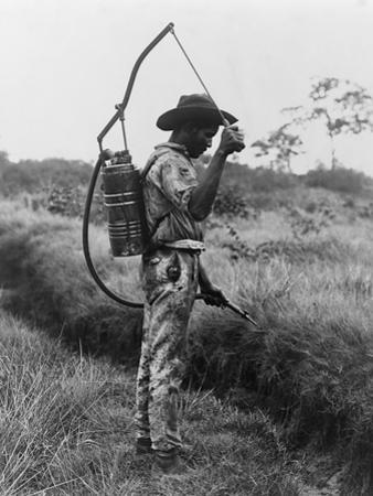 Worker Spraying Oil on Breeding Places of Mosquitoes in Panama, Ca. 1905
