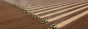 Workers on Combines Harvest Soybeans in Correntina, Northern Brazil