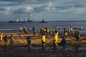 Workmen Cleaning Up after Oil Spill