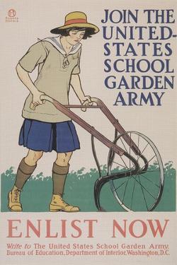 World War I Poster for Gardening