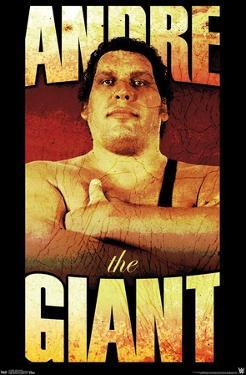 WWE - Andre The Giant