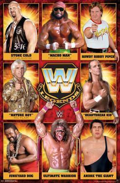 WWE LEGENDS - GROUP 17