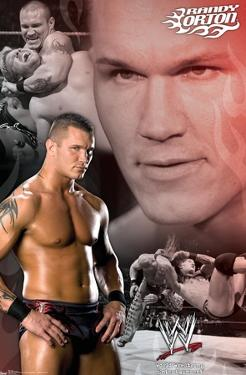 WWE - Randy Orton Collage