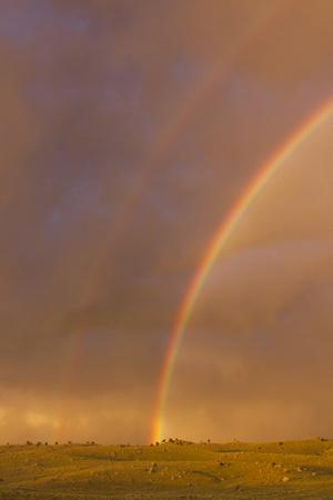 https://imgc.allpostersimages.com/img/posters/wyoming-sublette-county-double-rainbow-in-stormy-sky_u-L-PU3NSL0.jpg?p=0