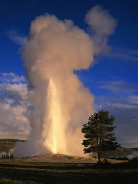 Wyoming, Yellowstone National Park, Old Faithful, Steam and Water Erupting from Thermal Pool
