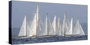 Sailing Team by Xavier Ortega