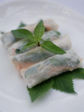 Fresh Vietnamese Spring Rolls Served at a Restaurant in Vietnam by xPacifica