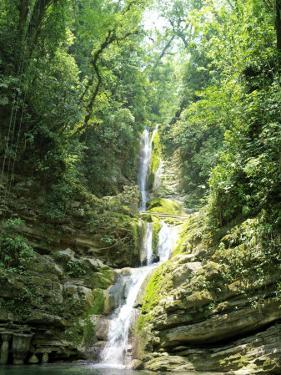 Jungles Where Edward James Built His Las Pozas by xPacifica