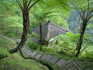 Stone Stairway Leads to a Hut in the Jungle by xPacifica