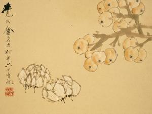Apples by Xu Gu