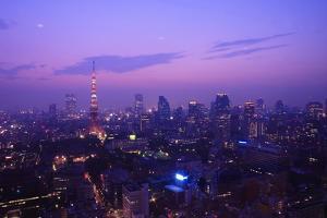 Tokyo Skyline by y0sshi
