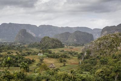 Mogotes in the Vinales Valley, UNESCO World Heritage Site, Pinar Del Rio, Cuba, West Indies