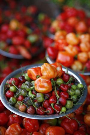 Peppers at Sao Joaquim Market, Salvador (Salvador de Bahia), Bahia, Brazil, South America by Yadid Levy