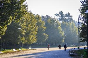 Sempione Park, Milan, Lombardy, Italy, Europe by Yadid Levy