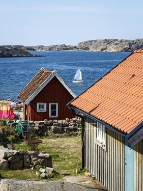 Timber Houses in Fjallbacka, Bohuslan Region, West Coast, Sweden, Scandinavia, Europe by Yadid Levy
