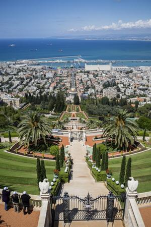 View over the Bahai Gardens, Haifa, Israel, Middle East by Yadid Levy