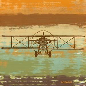 Biplane II by Yashna