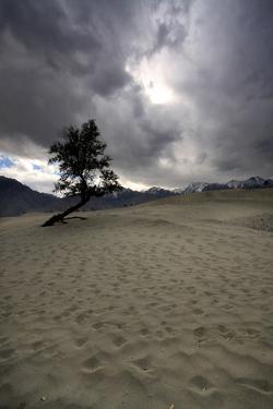 Alone in Skardu Desert by Yasir Nisar Pakistan
