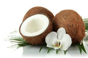 Coconuts with Leaves and Flower, Isolated on White by Yastremska