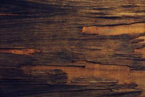 Old Wooden Texture by Yastremska