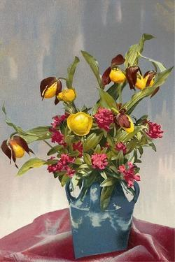 Yellow and Red Flowers in Blue Vase
