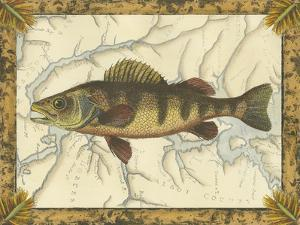 Yellow Perch on Map